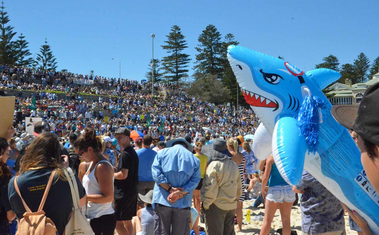 2014 Shark cull protest